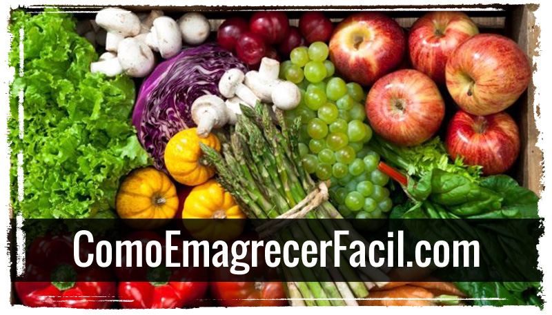 reeducacao alimentar para perder peso